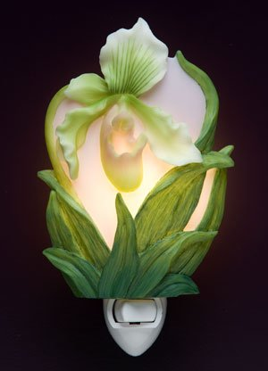 Lady Slipper Orchid Night Light